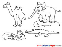 Animals free Colouring Page download