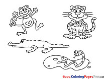 Animals printable Coloring Sheets download