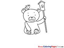 Birdhouse Bear download printable Coloring Sheets