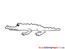 Crocodile free printable Coloring Sheets