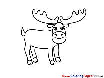 Deer download Colouring Sheet free
