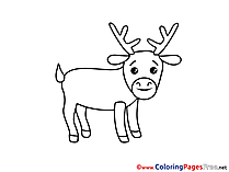 Deer download printable Coloring Pages