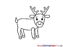 Deer download printable Coloring Pages