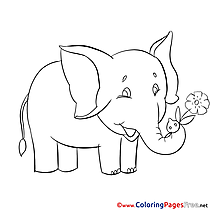 Elephant Coloring Sheets download free