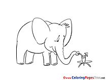 Free Elephant Colouring Page download