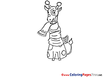 Giraffe in Scarf Colouring Sheet download free