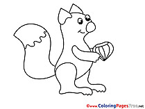Squirrel Colouring Page printable free