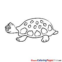 Turtle printable Colouring Page for Kids