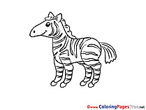 Zebra download printable Coloring Pages