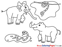 Zoo download Coloring Pages for Kids