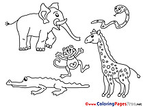 Zoo download for free Coloring Pages